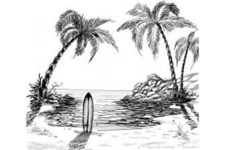 夏天的椰子树简笔画图片