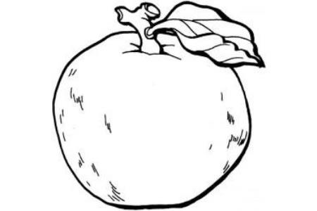 怎么画苹果