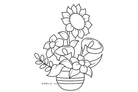向日葵马蹄莲插花图片简笔画