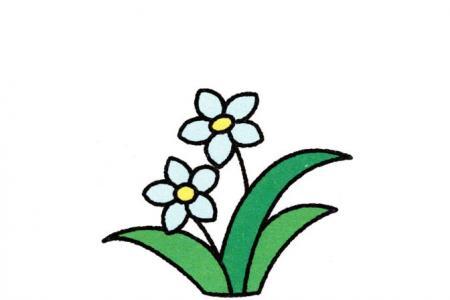 幼儿水仙花的画法