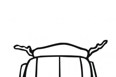 科罗拉多甲虫