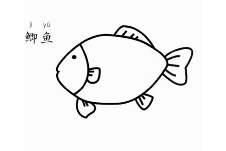 鲫鱼怎么画