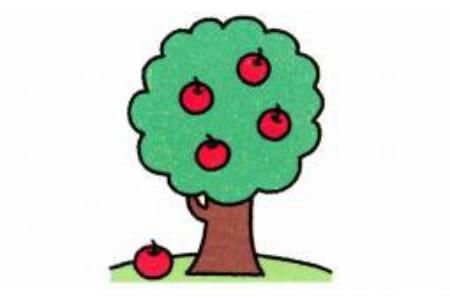 苹果树简笔画画法