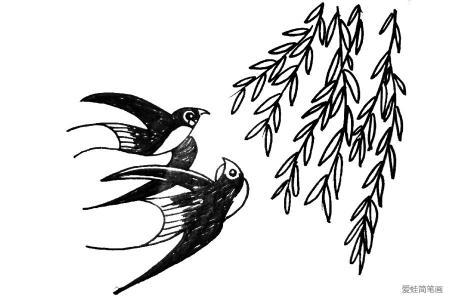 柳树下的燕子