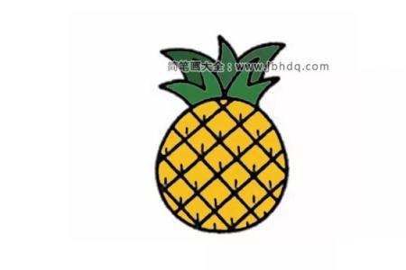 简单的菠萝简笔画图片
