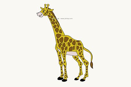 长颈鹿简笔画图片