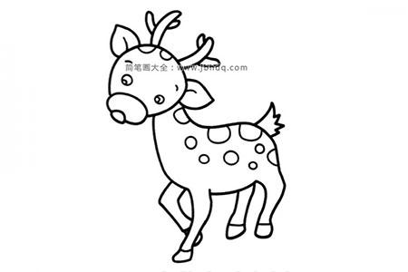 可爱的小梅花鹿