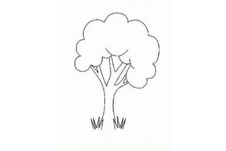 漂亮的大树简笔画图片大全