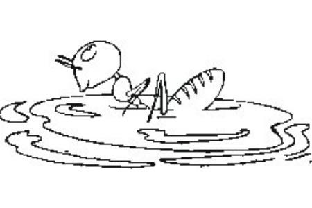 游泳的蚂蚁