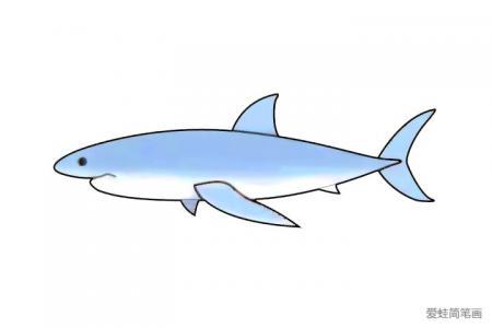 大白鲨简笔画怎么画