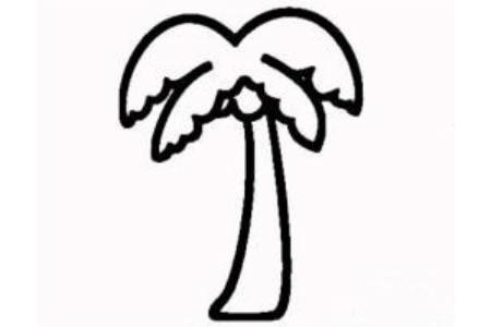 简笔画椰子树的画法