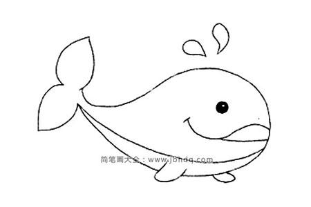 动物简笔画 鲸鱼