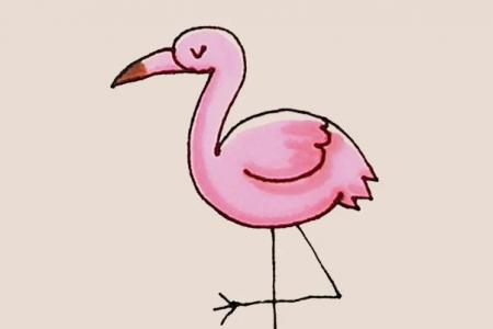 简笔画之火烈鸟