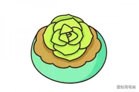 漂亮的多肉植物简笔画7