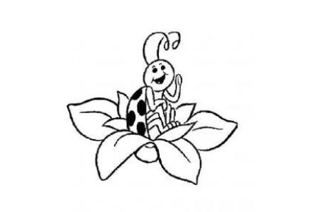 七星瓢虫简笔画 卡通瓢虫简笔画图片