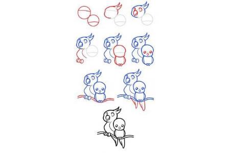 小鸟简笔画教程大全 鹦鹉母子简笔画画法