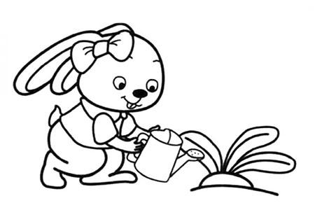 小兔子妹妹给萝卜浇水