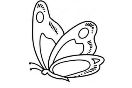 飞舞中的蝴蝶简笔画
