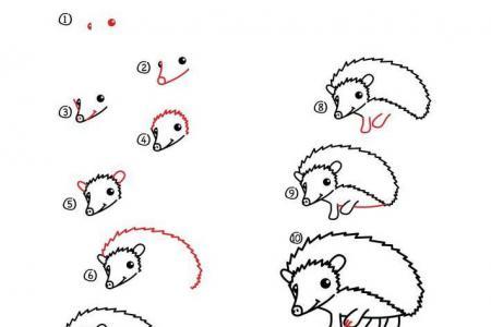 简笔画教程 刺猬简笔画步骤