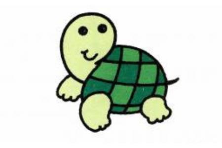 乌龟简笔画画法