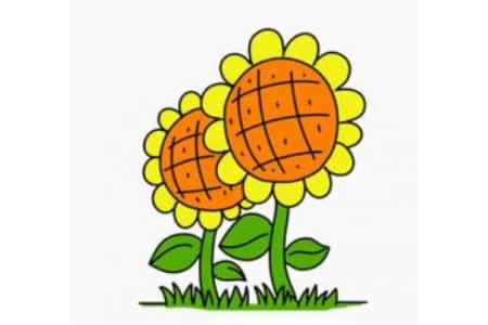 简笔画向日葵的画法