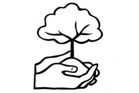 植物节简笔画素材 种植一颗小树简笔画