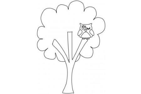 榕树和猫头鹰简笔画