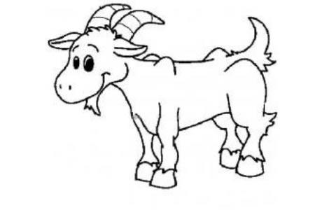 儿童卡通羊简笔画图片