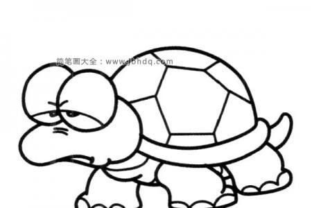 生气的乌龟简笔画