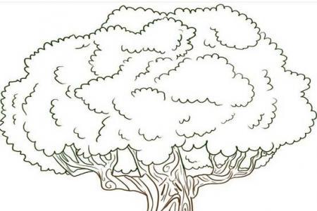 如何画卡通大树