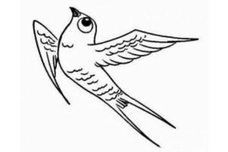 关于小燕子的简笔画