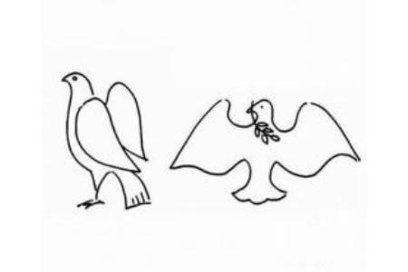 幼儿动物简笔画 和平鸽