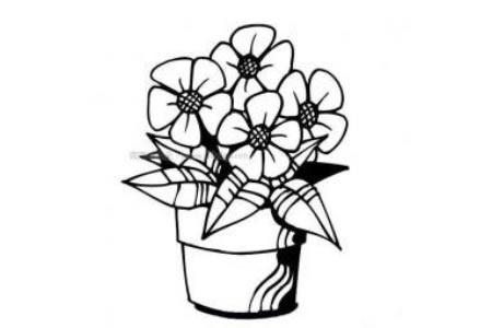 盆栽小花进阶版简笔画