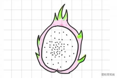 一组水果简笔画图片
