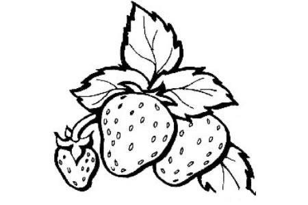 美味的草莓简笔画