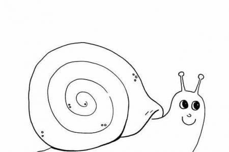 如何画蜗牛的简笔画图片