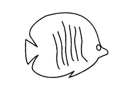 热带鱼简笔画大全及画法步骤