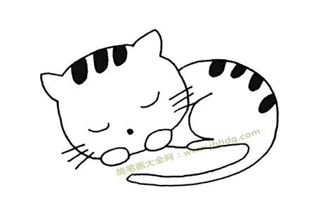 小猫在睡觉简笔画图片