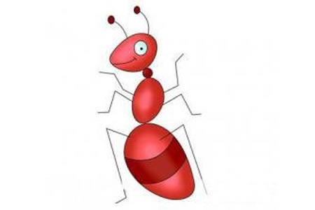 幼儿园昆虫简笔画教案《蚂蚁》