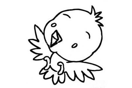 呆萌的小鸟