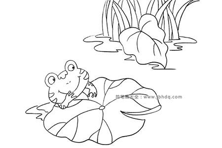 青蛙与荷叶