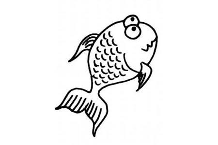 惊慌的金鱼
