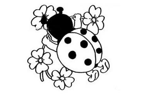花朵里的七星瓢虫简笔画