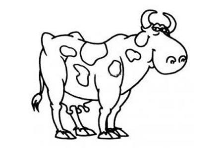骄傲的奶牛简笔画