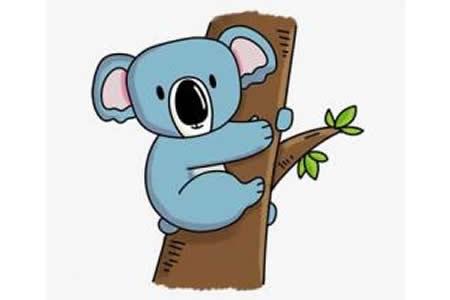 简笔画教程 树袋熊简笔画步骤