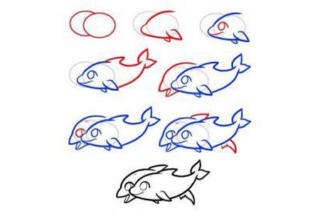 两只海豚简笔画教程