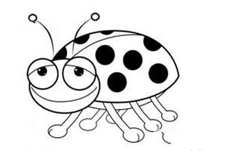 开心的七星瓢虫简笔画图片