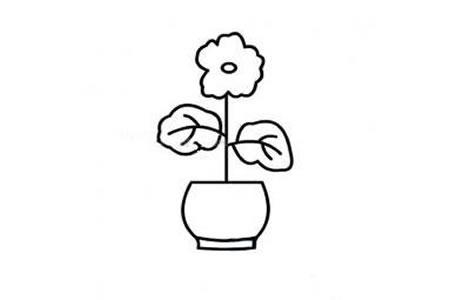 好看的小花盆简笔画