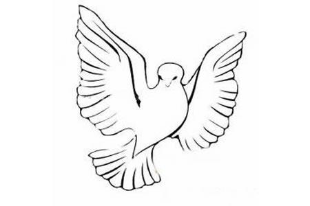 国庆节和平鸽简笔画
