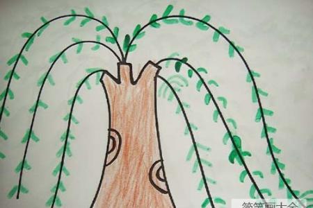 彩色涂色柳树简笔画图片